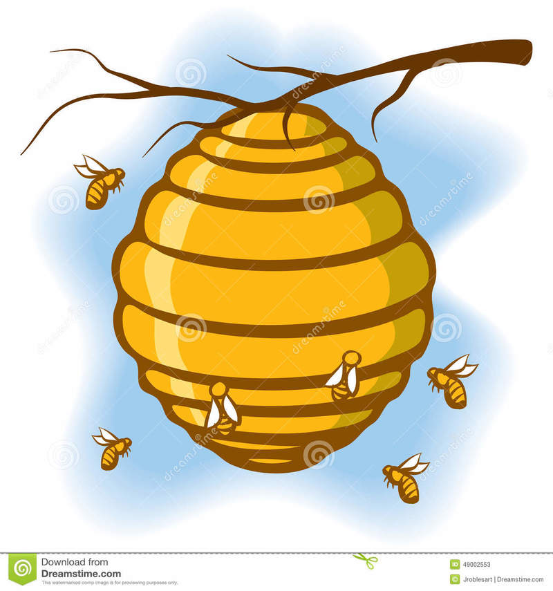 What Does A Beehive Mean Hinative