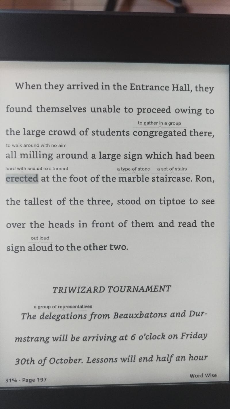 Từ này erected có nghĩa là gì?