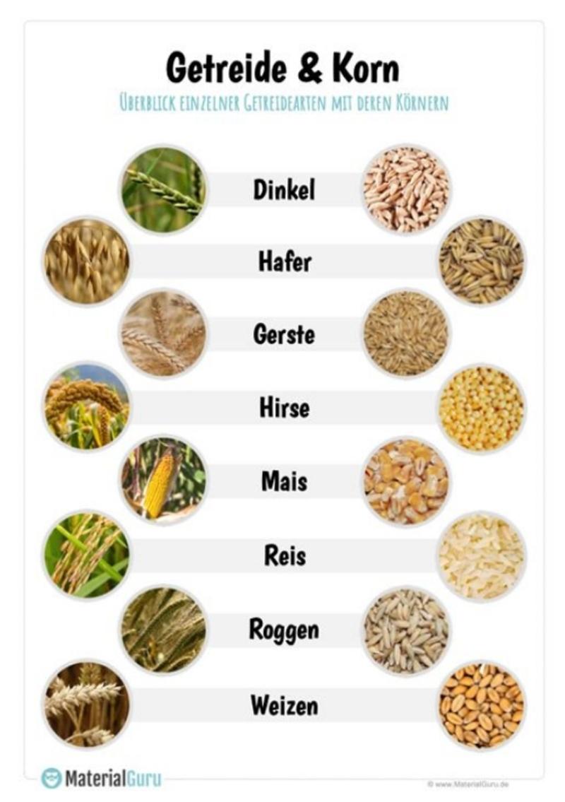 Klarer korn unterschied und Unterschied Korn