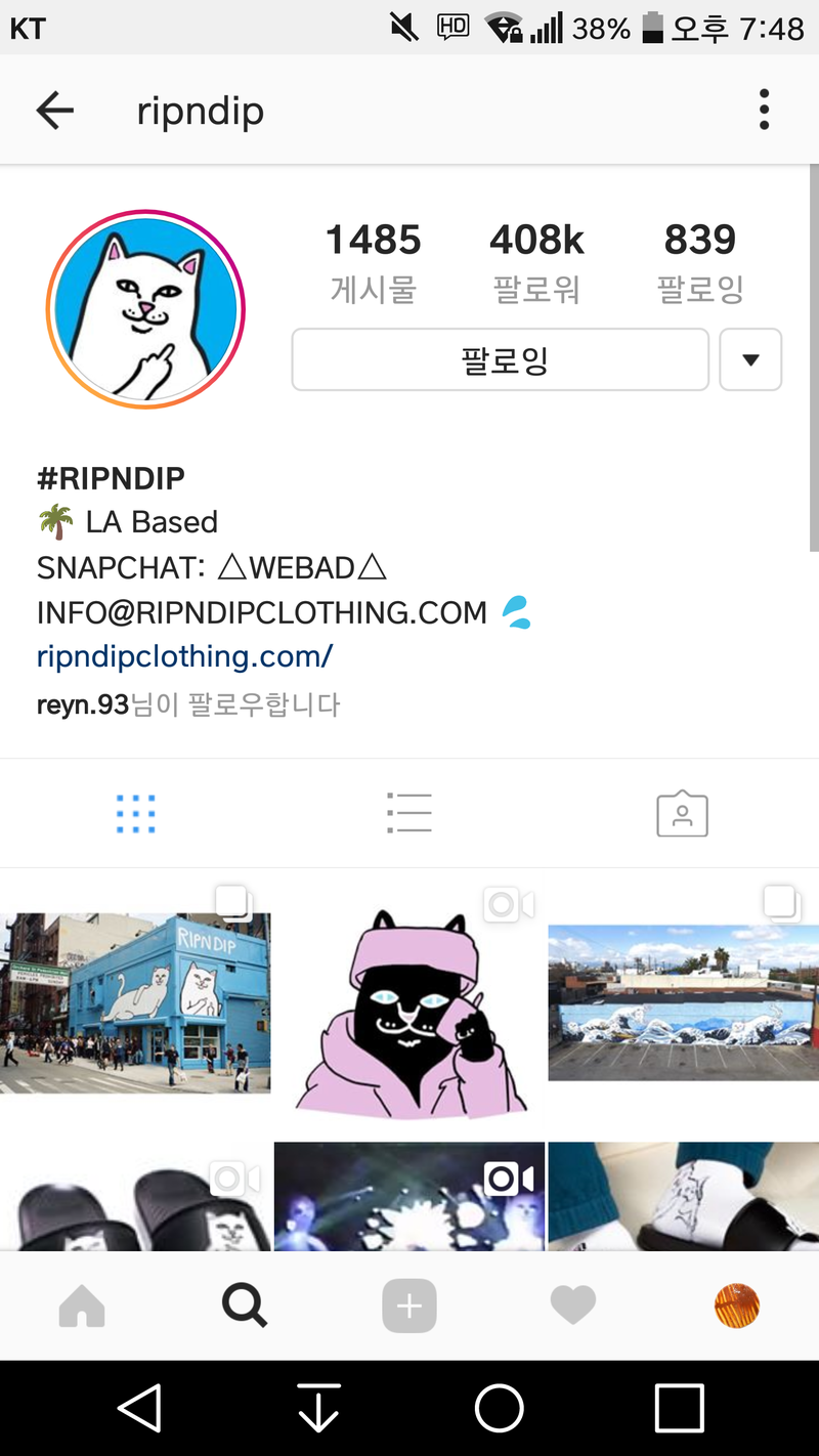i am always curious what is meaning of 'rip n dip' exactly  is it